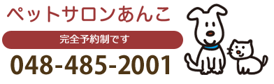 048-485-2001