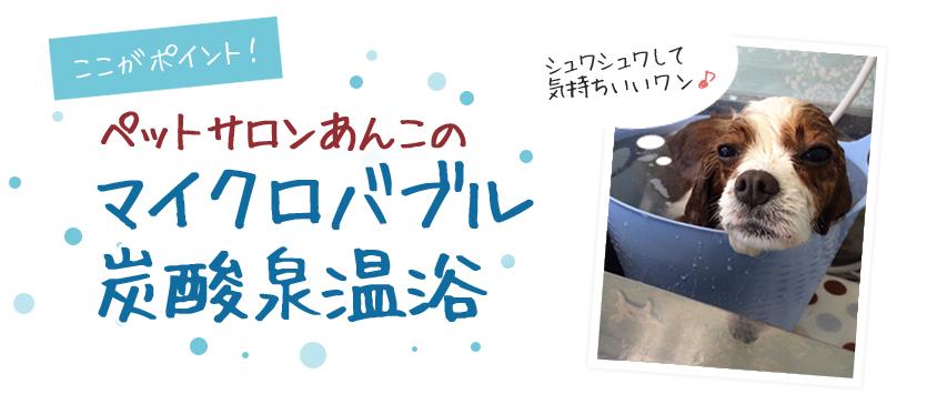 マイクロバブル炭酸泉温浴